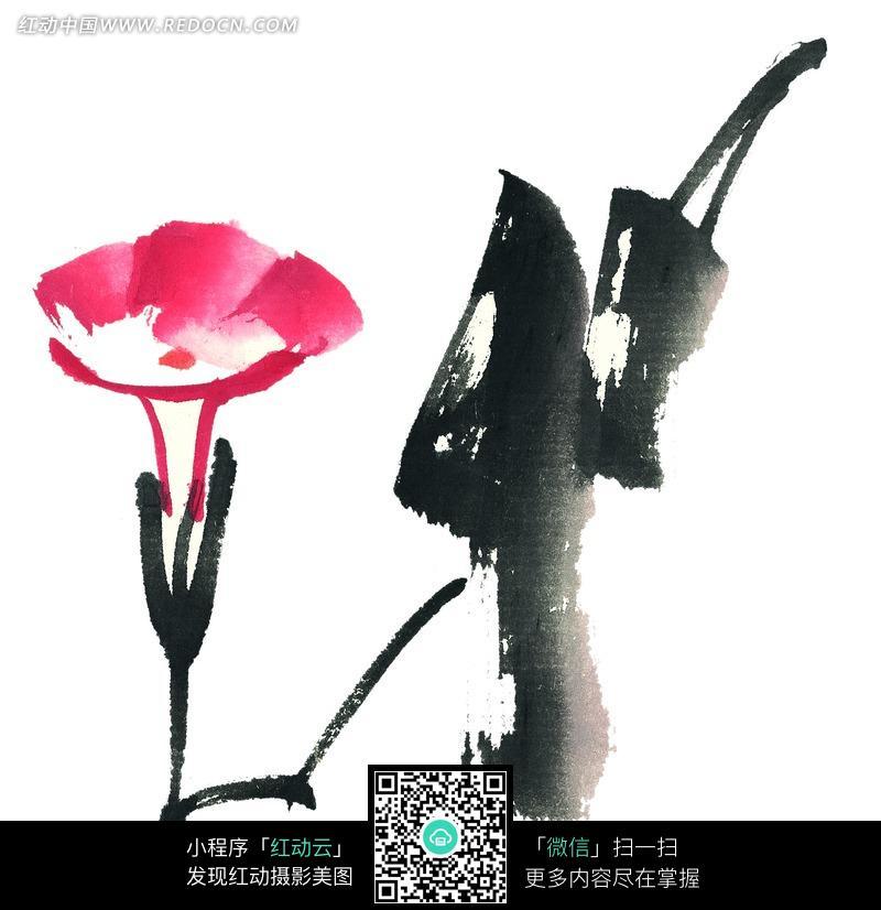 喇叭花写意图片_怎样画写意画牵牛花和蜜蜂ming_zhao_1101