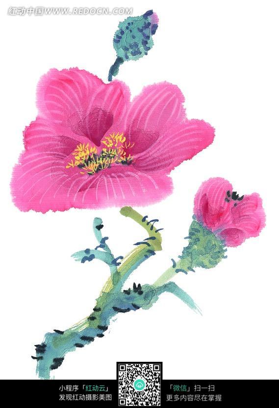 梅花花朵写意画图片_书画文字图片