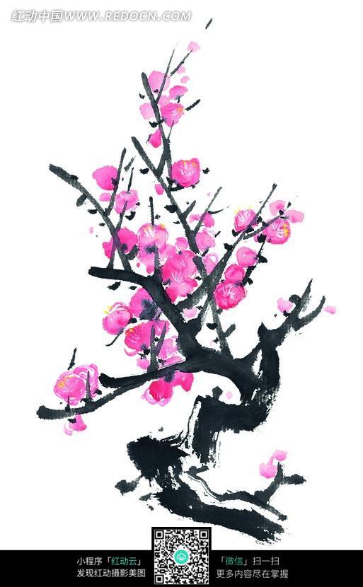一棵梅花写意画图片
