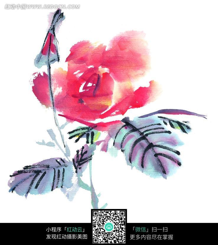 手绘水墨红玫瑰