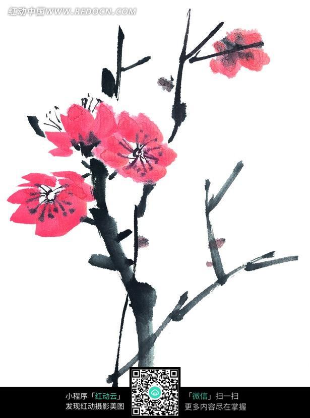 一枝红色梅花写意画图片