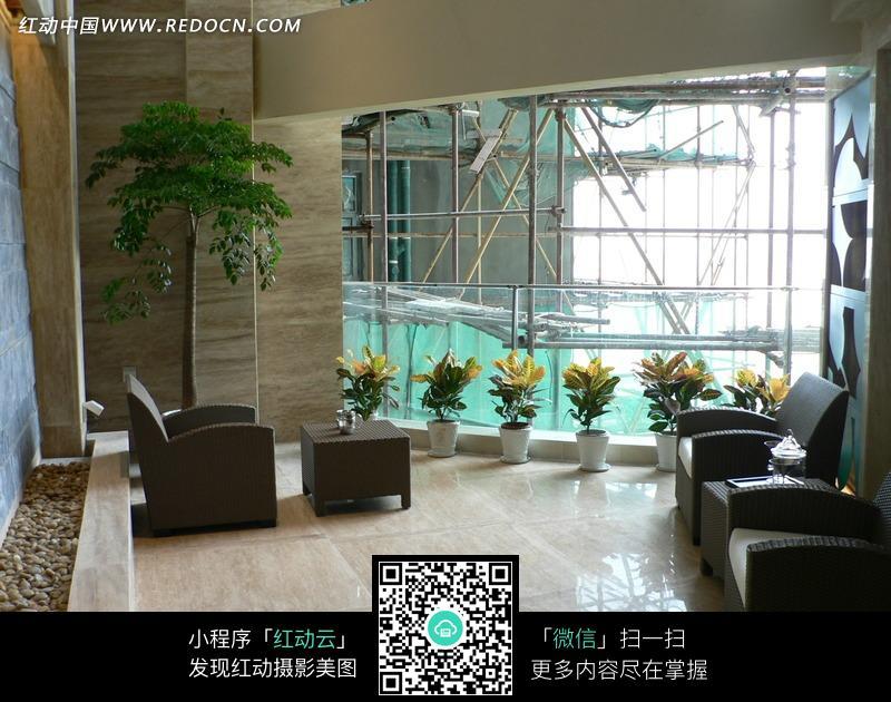 窗边盆栽植物和黑色沙发图片