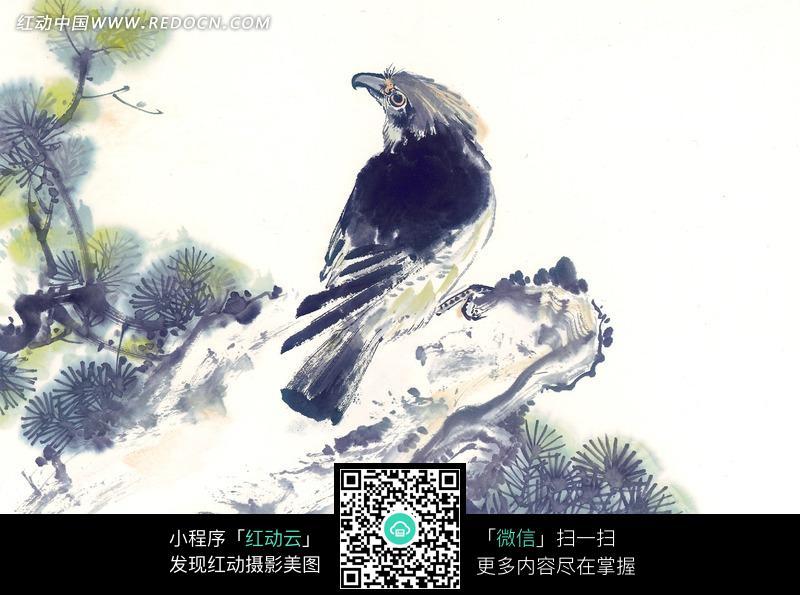 石头上的鹰水墨画