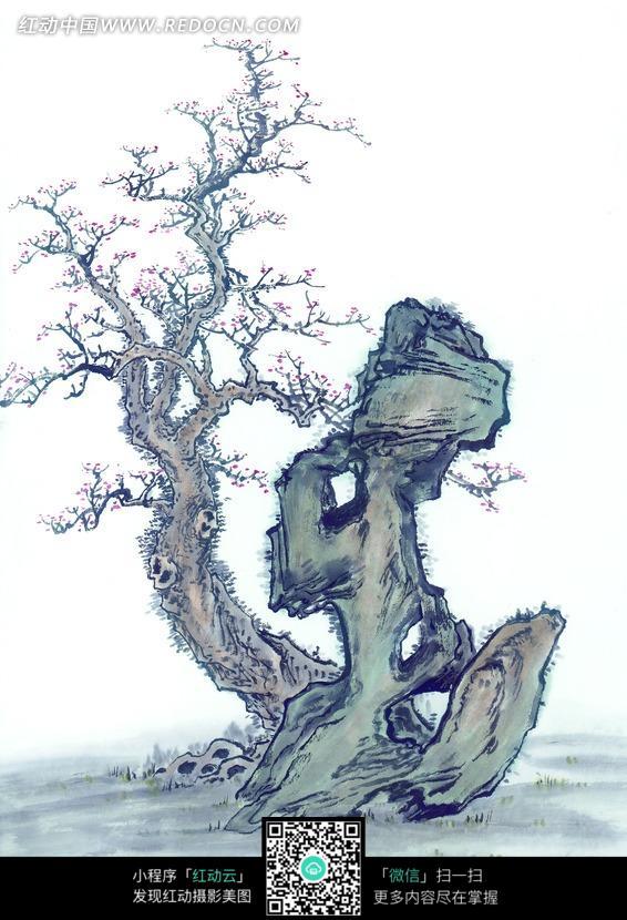 水墨画—长在石头边的古树图片