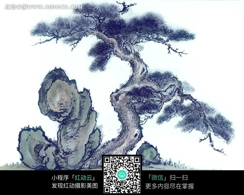 岩石边的松树水墨画图片