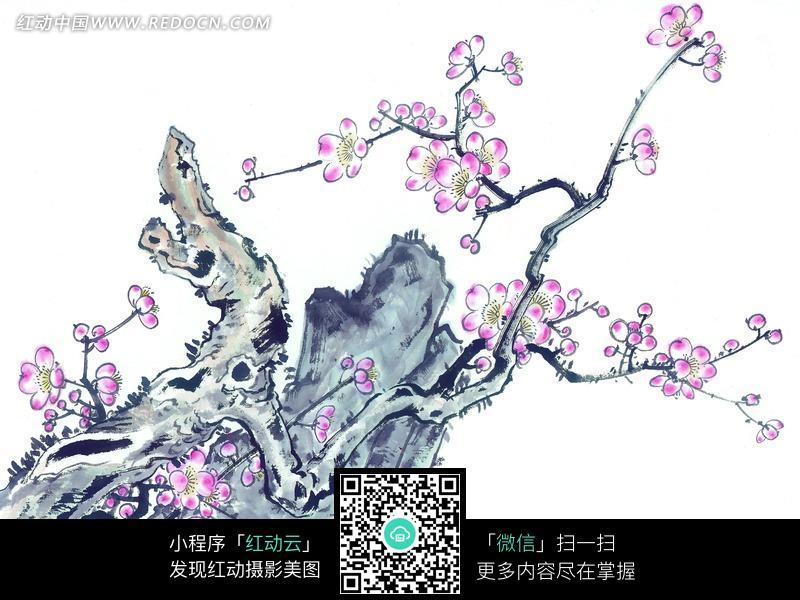 水墨画—长在石头边的梅花