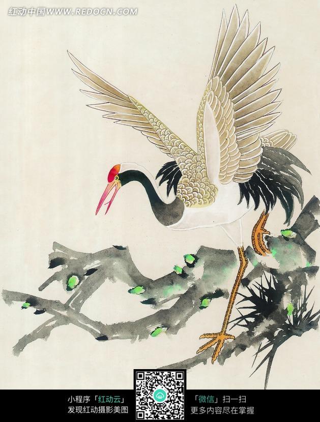 枝头上的丹顶鹤水墨画图片