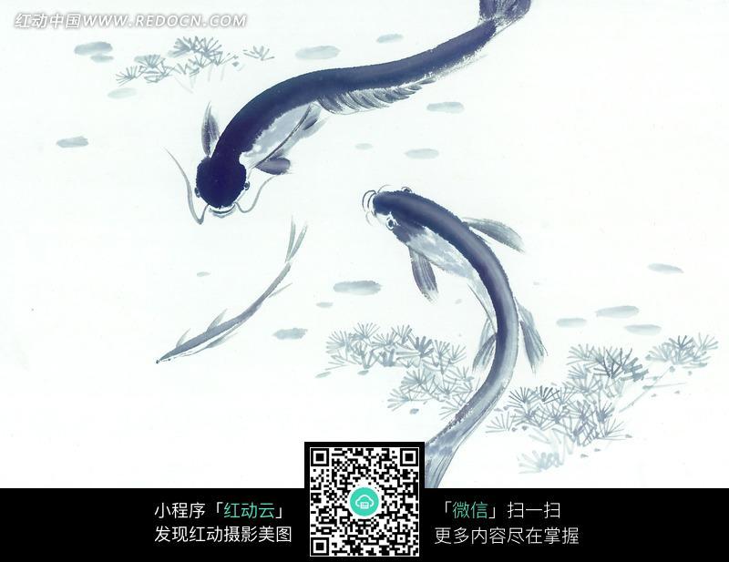 水里嬉戏的灰色鱼水墨画图片图片