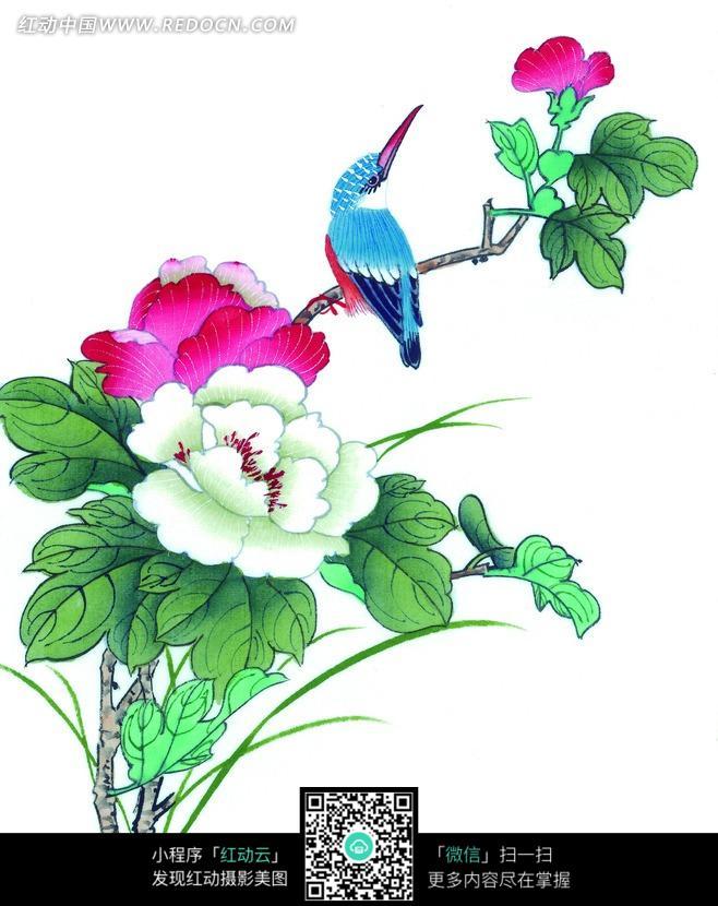牡丹枝头的翠鸟工笔画
