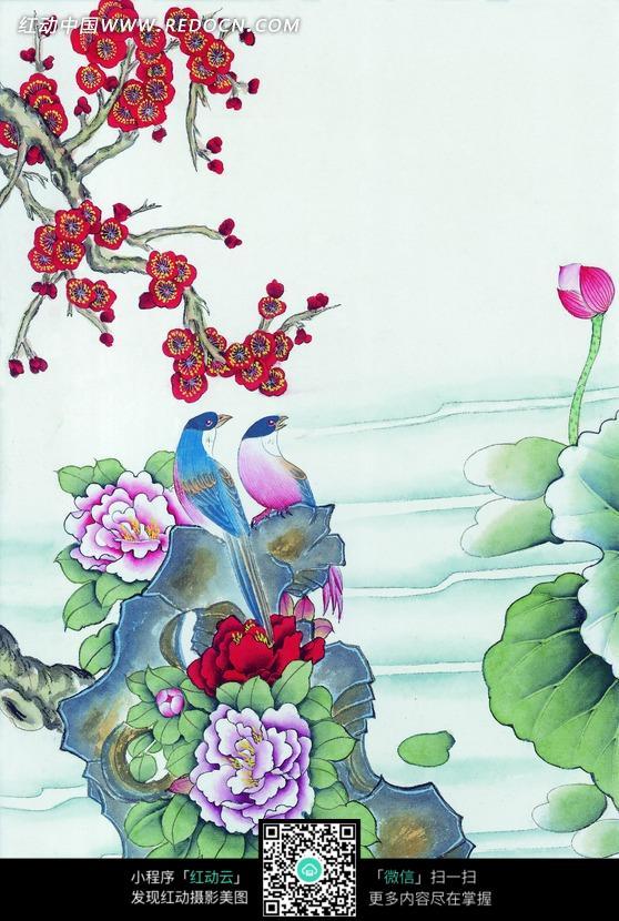 工笔画—梅花枝下石头上的喜鹊