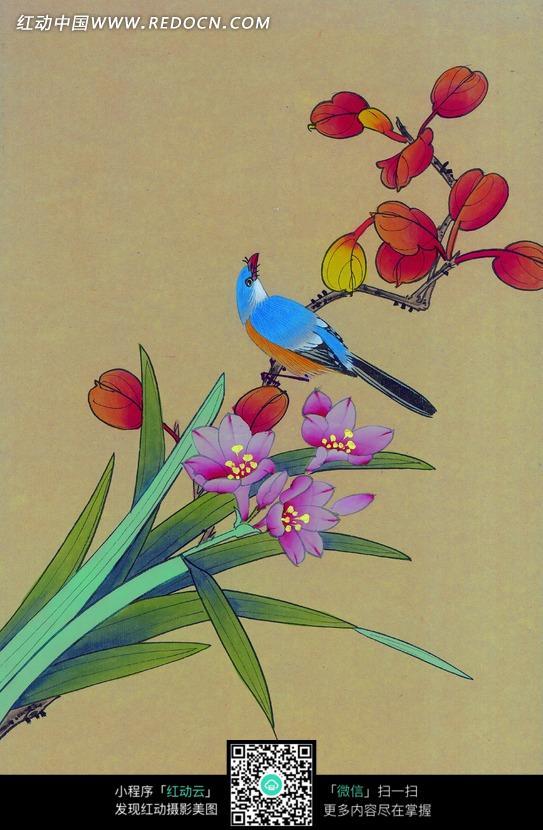 工笔画—盛开的兰花和树枝上的喜鹊
