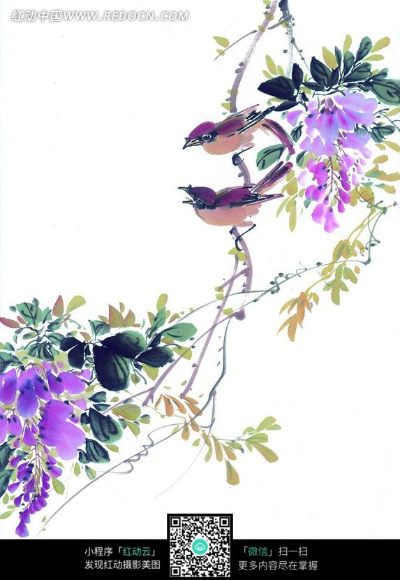 花鸟工笔画图片