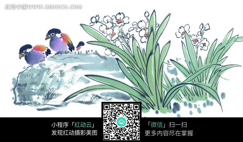 水墨画—水仙花边岩石上的鸟