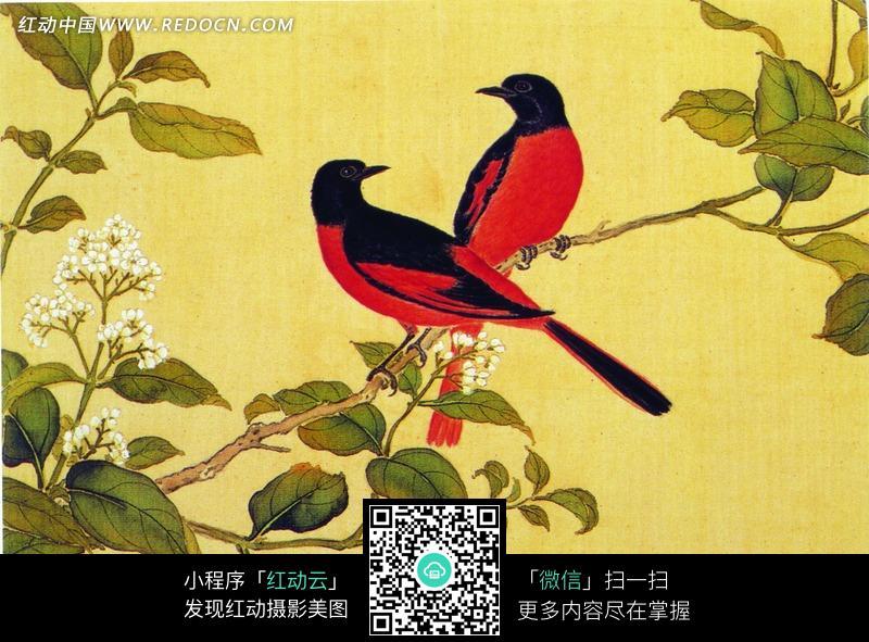 工笔画—树枝上的红色喜鹊图片