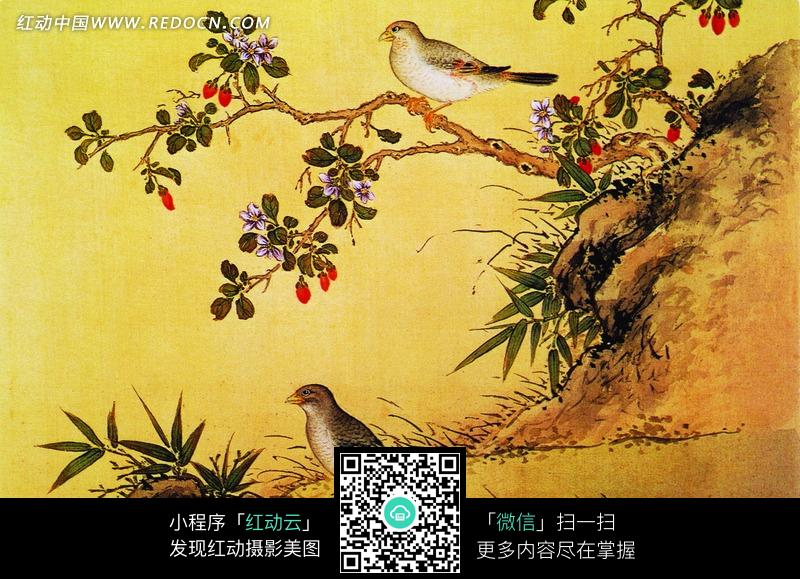 工笔画—树枝上和草地上的喜鹊