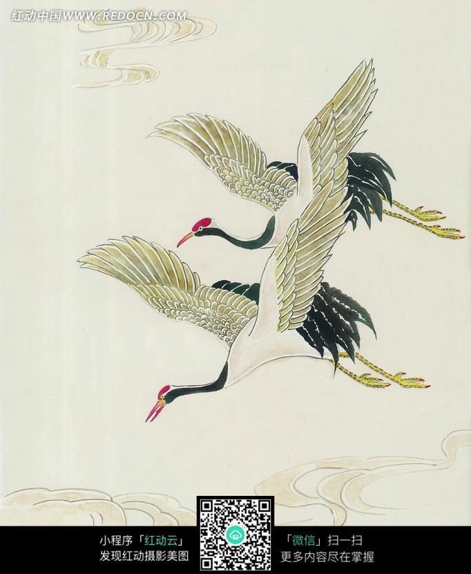 飞翔的丹顶鹤工笔画