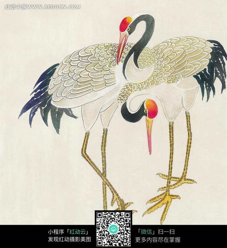两只丹顶鹤工笔画图片免费下载 红动网