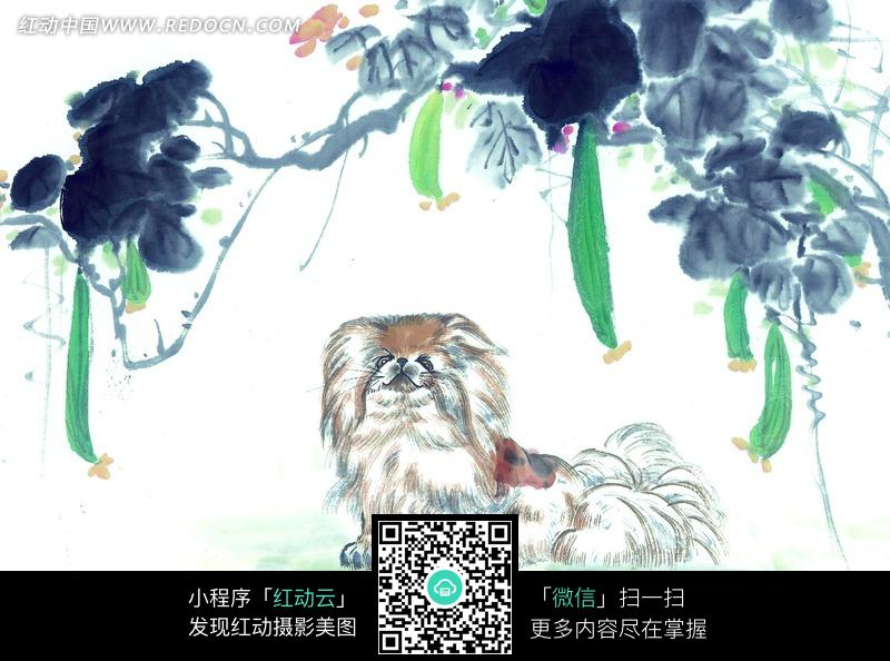 丝瓜架下坐着的京巴水墨画 书画 中国风 动物 艺术 图片素材图片