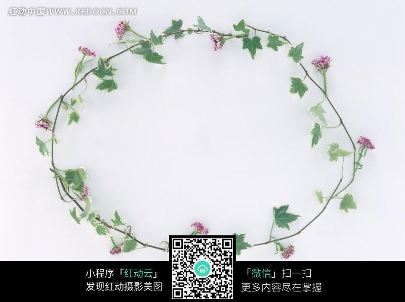 圆形鲜花花环图片素材