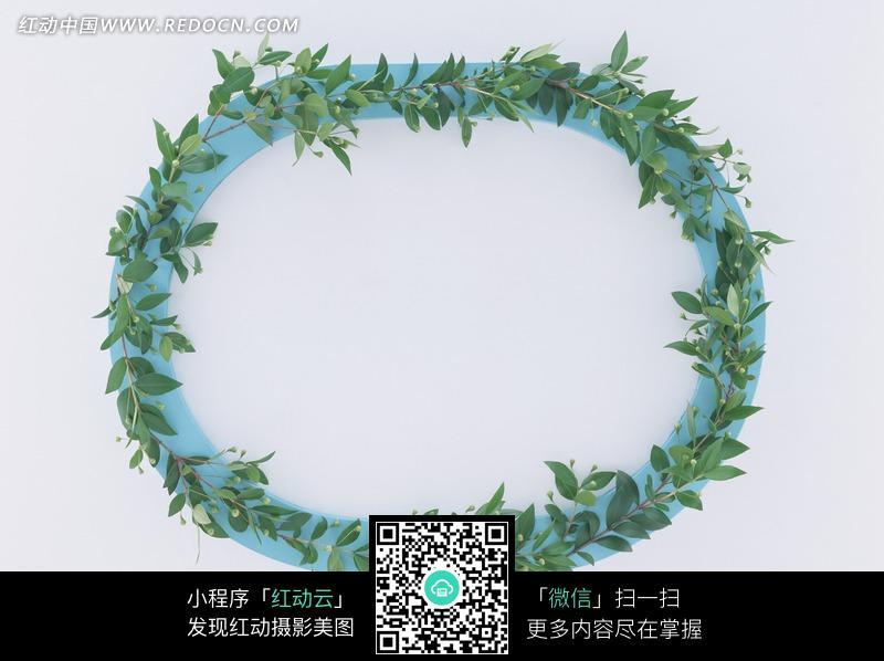 绿叶围成的椭圆形花环图片