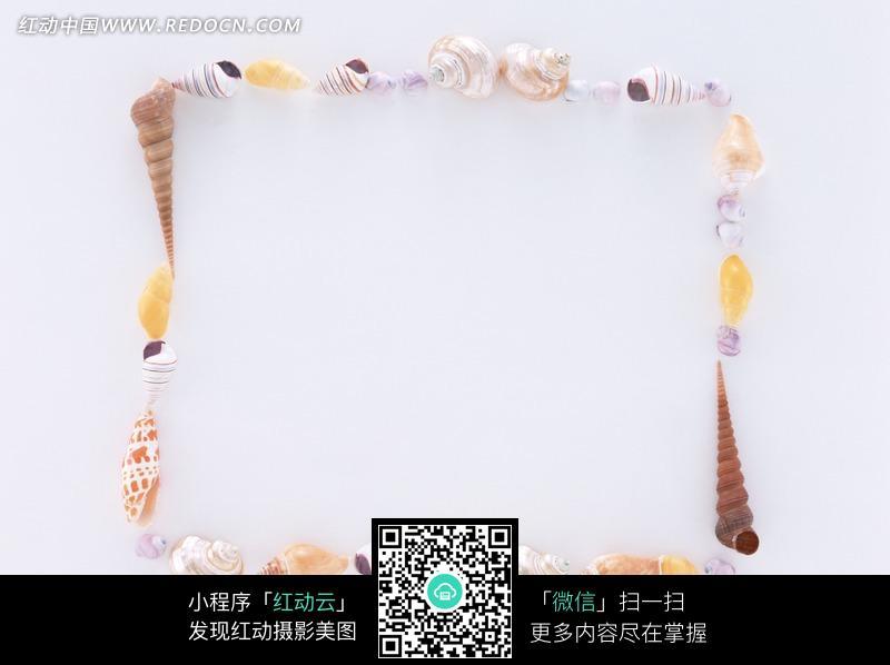 用海螺围成的方框图片图片