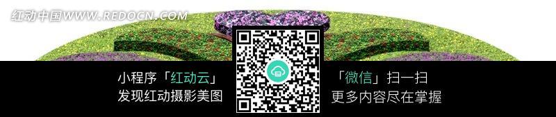 半圆形花坛图片