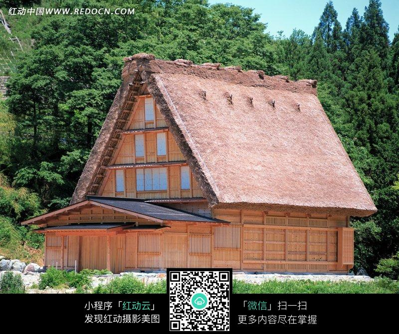 树林边的木屋图片