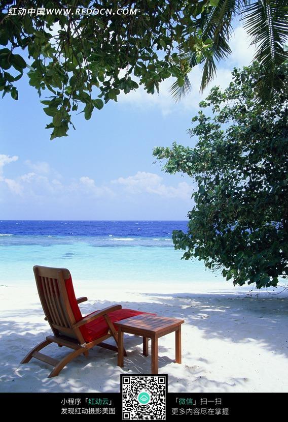 海边树下放着的椅子图片
