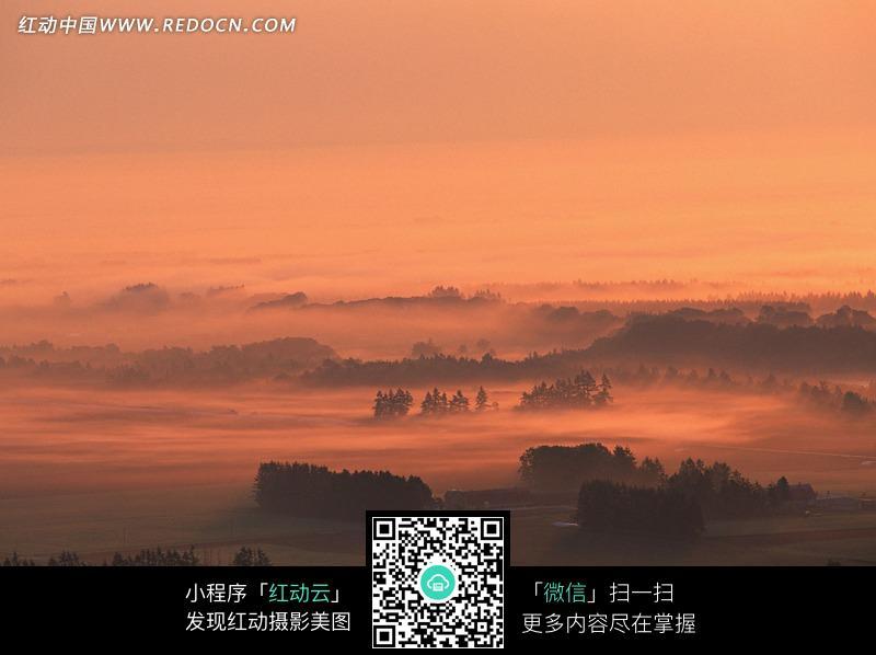 免费素材 图片素材 自然风光 自然风景 昏暗天空下雾气缭绕的树林