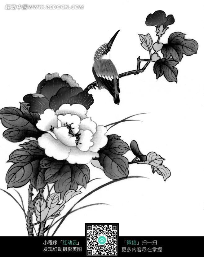 工笔画之站在树枝上的鸟和盛开的花朵