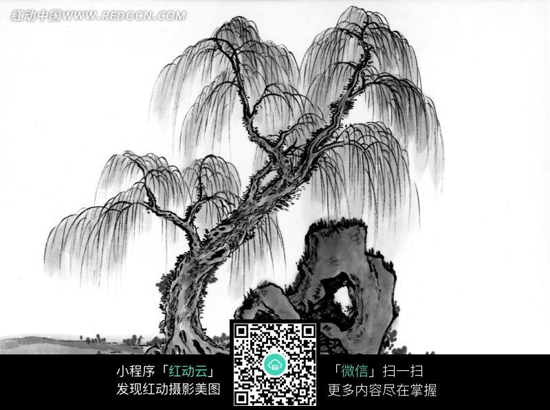 岩石和柳树国画图片图片