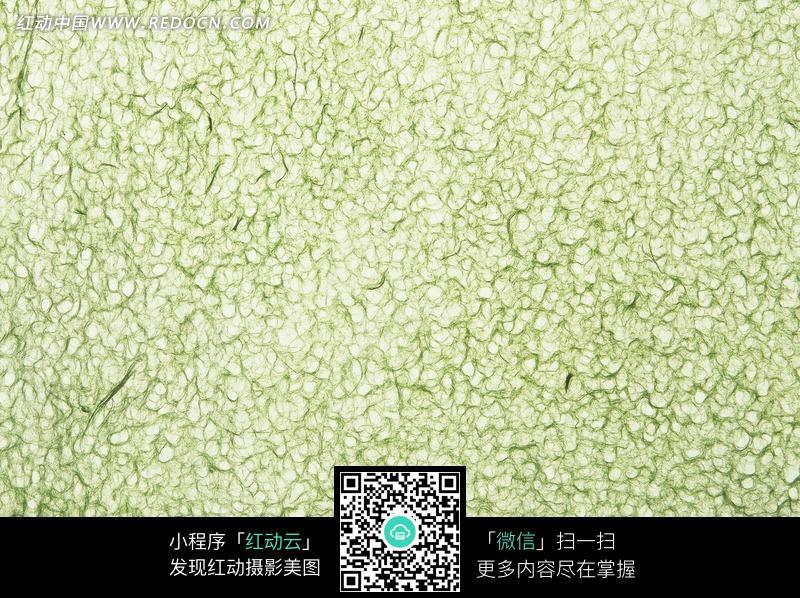 蓝底白色植物花纹墙纸_底纹背景图片_红动手机版