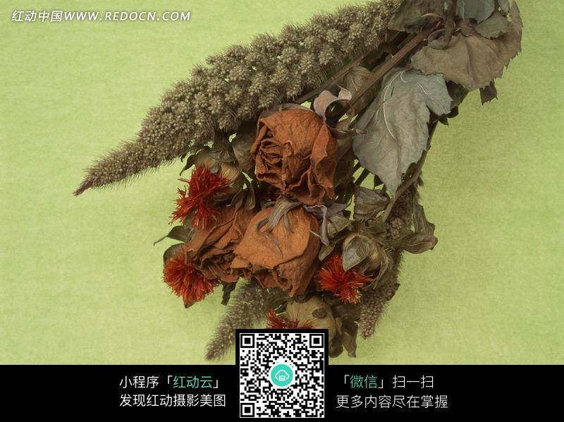 一束枯萎的花朵图片_花草树木图片