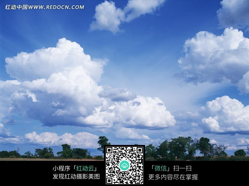 蓝天白云下的树木和泛黄的草地图片_自然风景图片