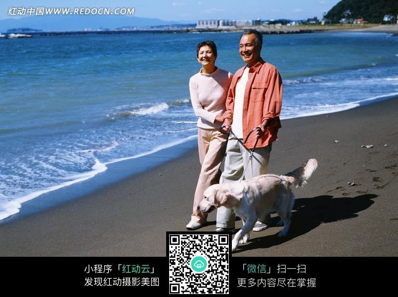 海边 沙滩 散步 夫妻 老年人 狗 宠物 人物 图片素材 生活照片 生活图片