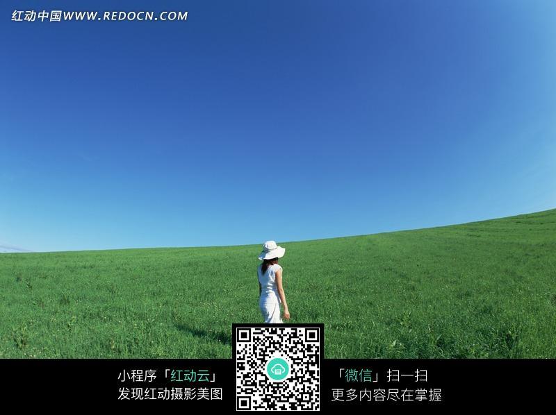 蓝天草地上走路的美女背影图片