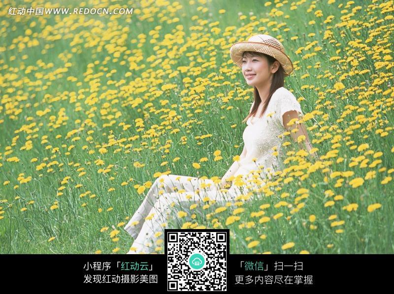 坐在菊花地上的美女图片