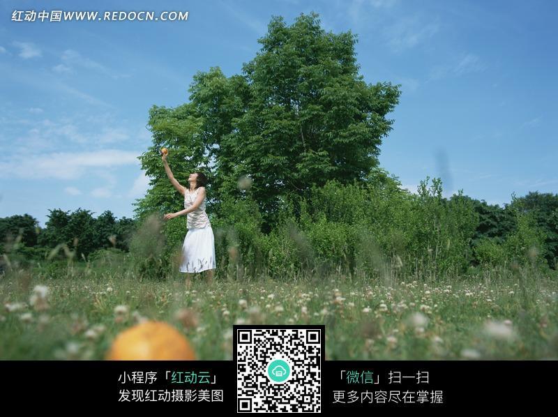 蓝天白云草地上的 美女 图片