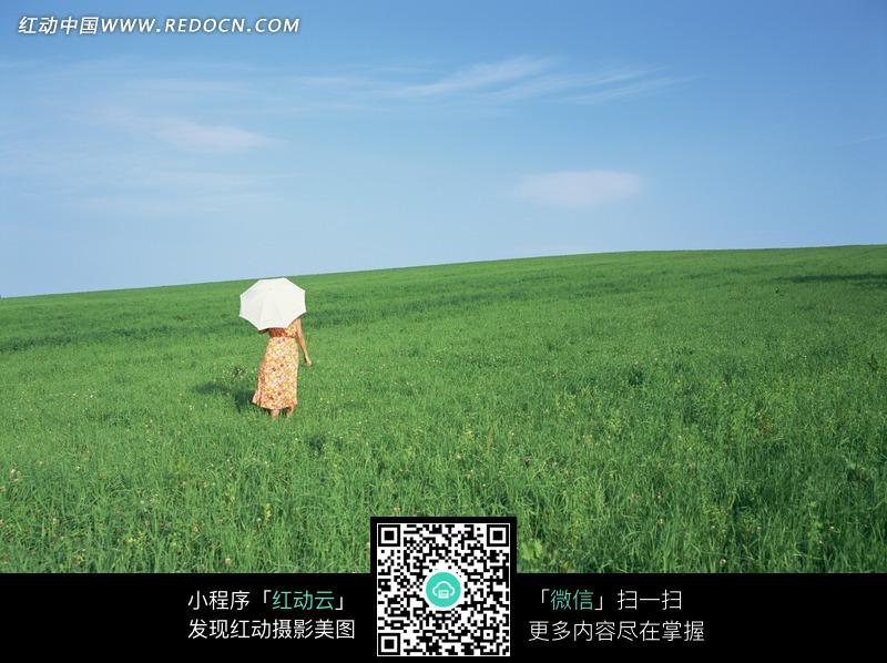 蓝天下在草地上打伞的女人背影图片