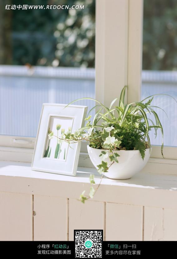 窗台上的盆栽和相框图片