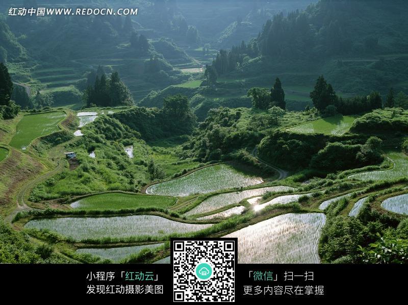 免费素材 图片素材 自然风光 自然风景 山区梯田美景摄影图片  请您