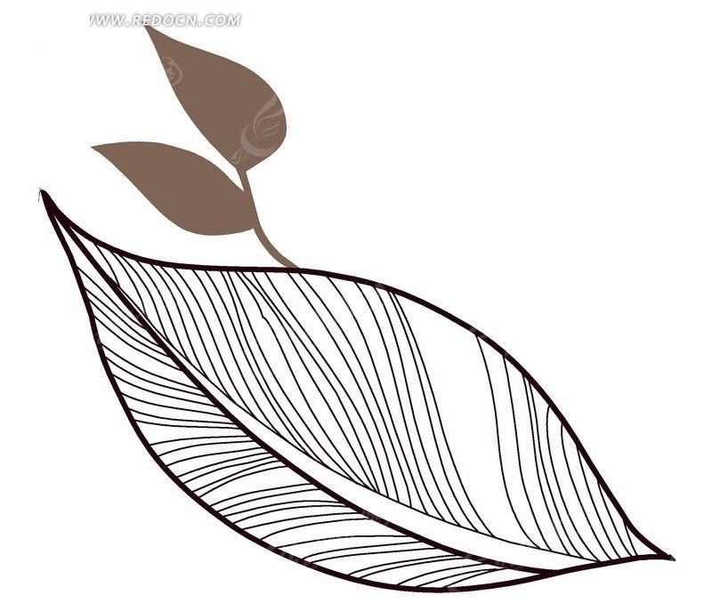 叶子 黑白 纹络 手绘 psd分层素材 植物素材 花纹 花纹素材 花边 花边
