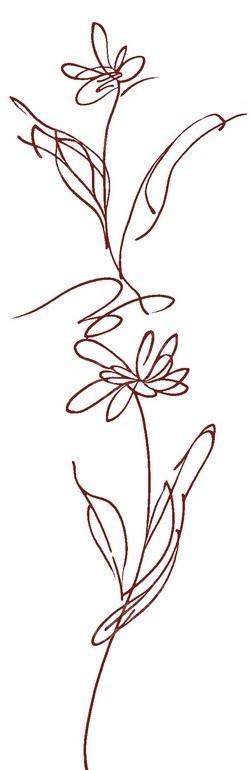 手绘线稿花朵插画文件展示