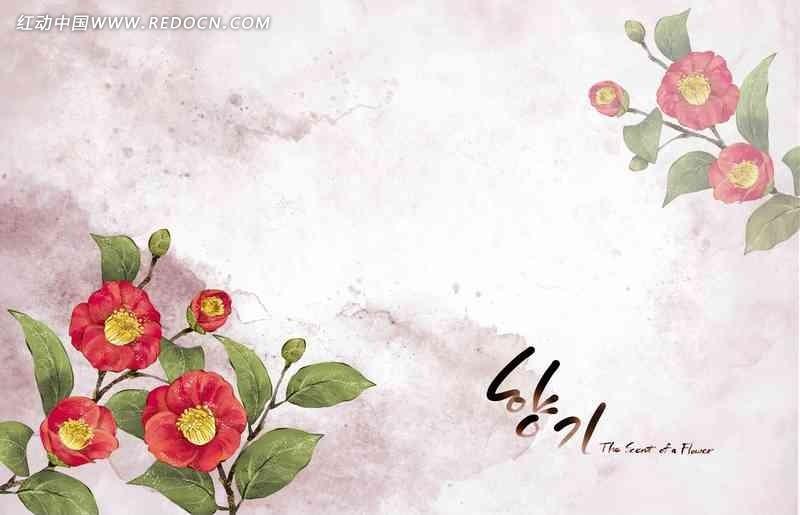 韩式精美手绘唯美花卉