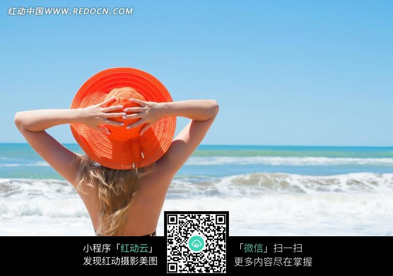 沙滩比基尼美女背影图片图片 女性女人图片