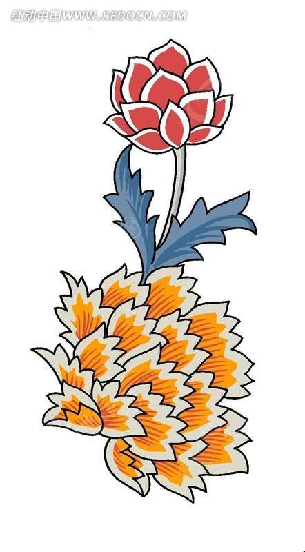 手绘美丽花朵植物插画