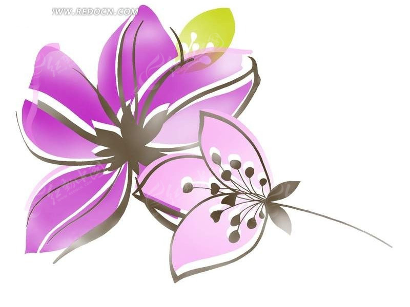 手绘紫色花瓣植物插画稿件