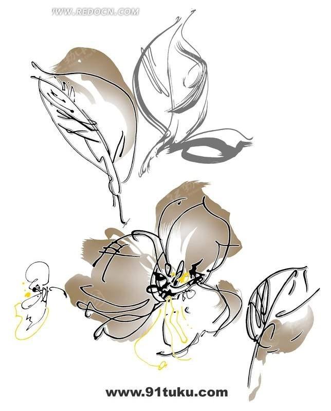 创意手绘花朵线稿上色插画