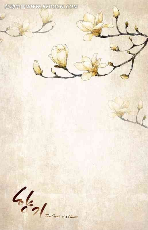 韩国手绘梅花背景素材