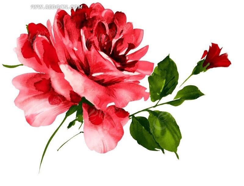 树叶画边-的红色花朵绿色叶子插画稿件PSD免费下载 花纹花边素材